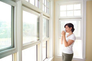 Replacement Windows Kendall FL